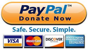 paypal-safe-secure-simple290